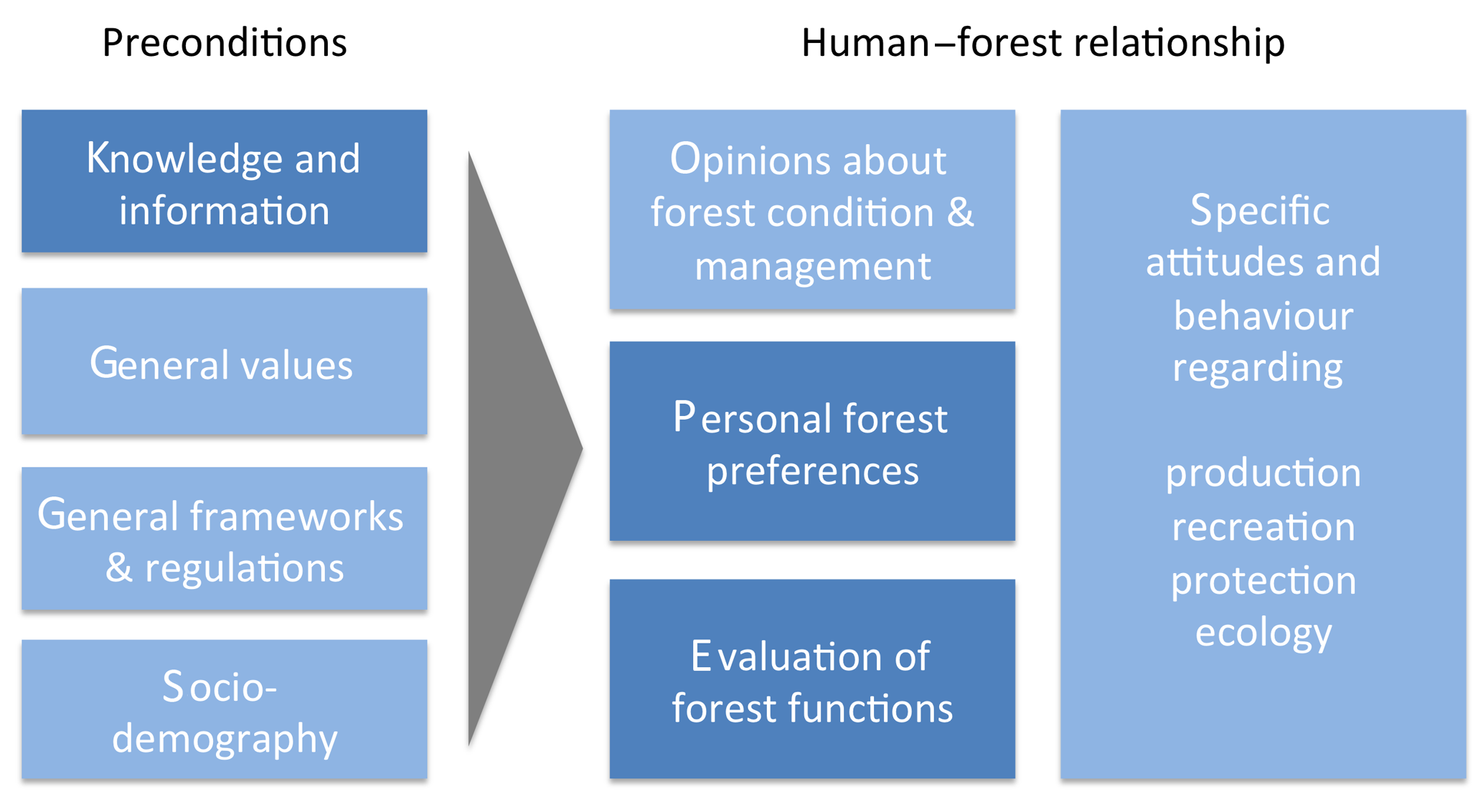 GH - What forest is in the light of people's perceptions and values